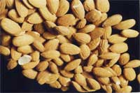 dry raw almonds with the skins on