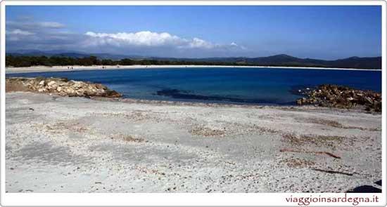 The Animal Friendly Beach In Satn'tanna Arresi