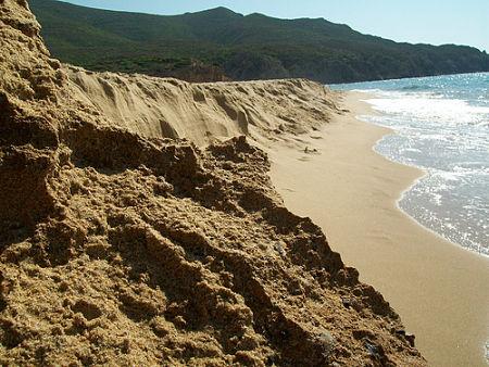 Scivu Beach Arbus