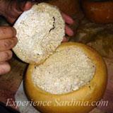 sardinian maggot cheese casu marzu
