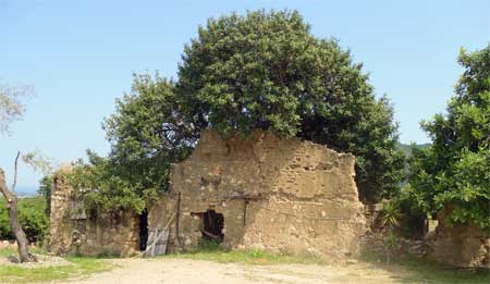 the old house in Agriturismo S'Omu Eccia In Ogliastra