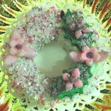 pink and green wreath cookie