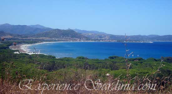 view of the sardinia italy beach near posada
