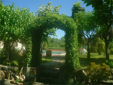 the gardens at the villa