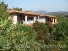 sardinia accommodation at the villa melissa in cardedu