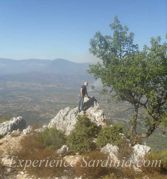 panoramic view from the baunei mountains sardinia